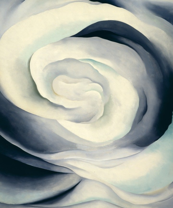 abstract-rose_2.jpg